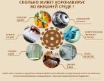 skolko-zhivet-koronavirus.png